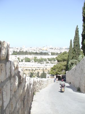 Path down to the Mt of Olives